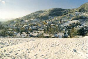 ort + wiese im schnee