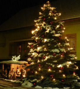 tannenbaum mit schnee und krippe forststraße
